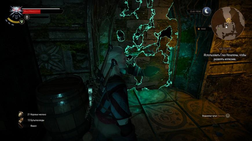 Ведьмак 3: Глаз Нехалены - Где взять и как правильно использовать