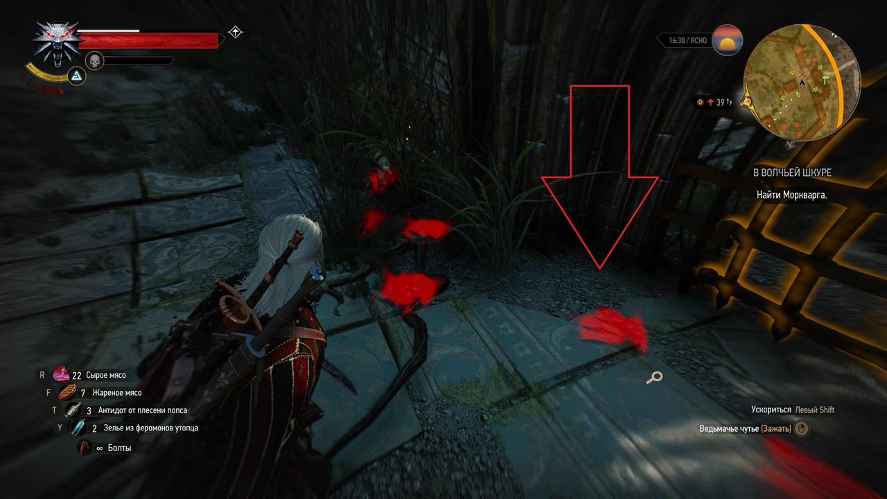 Ведьмак 3: Где найти Моркваргаи его ключ - Прохождение