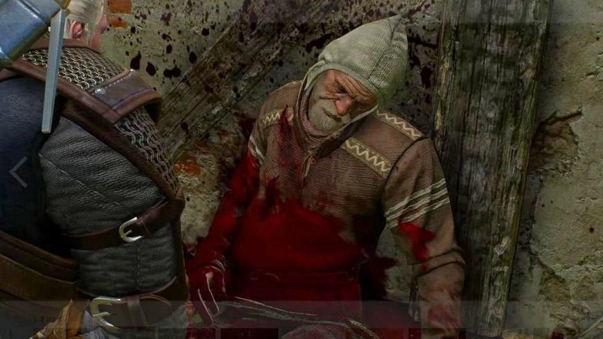 """Ведьмак 3: """"Игры кошек и волков"""" - прохождение, последствия"""