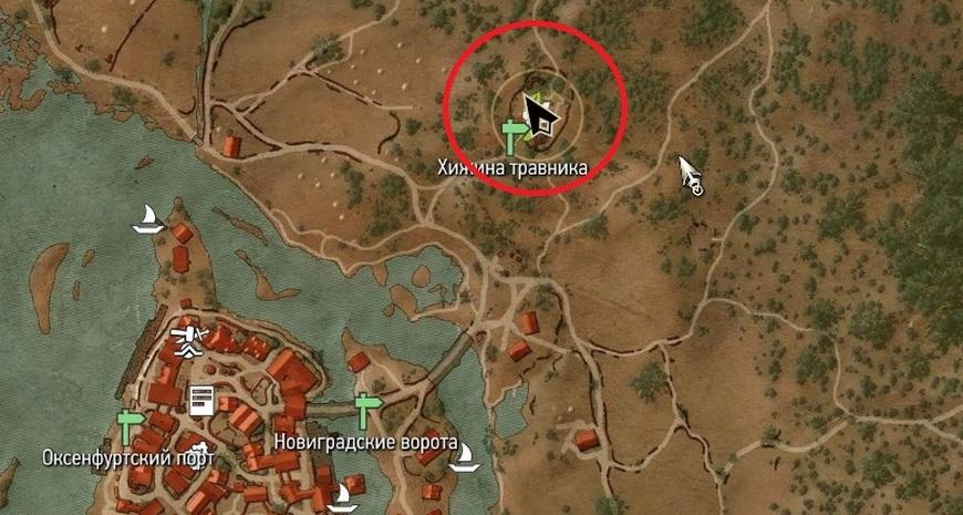 Где взять кровь гнильца в Ведьмаке 3: места обитания, тактика боя