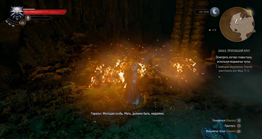 """Ведьмак 3: Квест """"Пропавший брат"""" - прохождение заказа, последствия"""