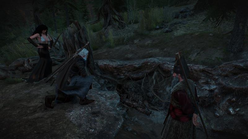 """Квест """"Эхо прошлого"""" в Ведьмаке 3: прохождение и последствия"""