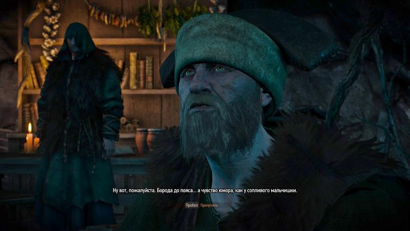 """Как пройти задание """"Шоковая терапия"""" в Ведьмаке 3: все способы напугать молчащего друида"""