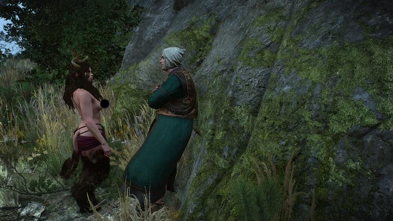 Где можно найти суккубов в Ведьмаке 3: как одолеть и переспать