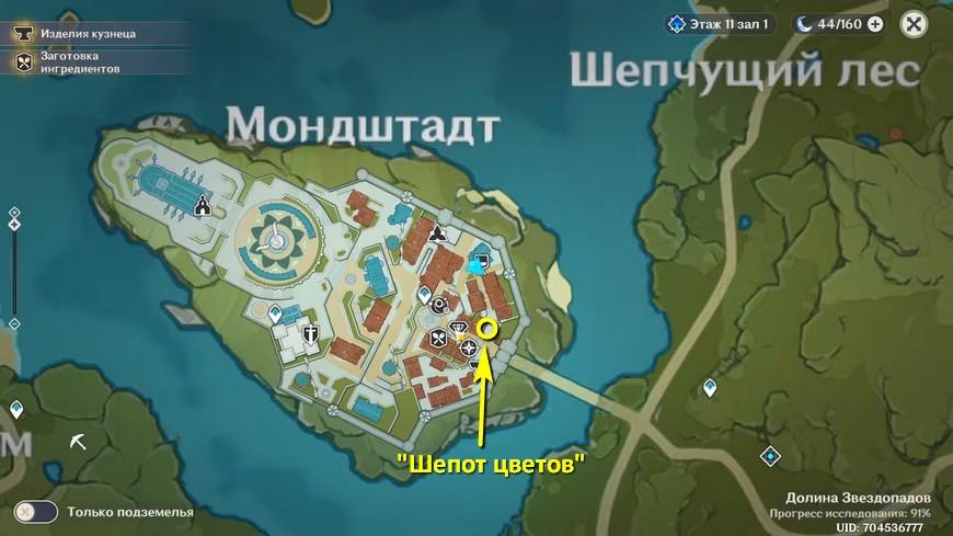 Genshin impact: Флора - где найти на карте, интересные факты, что продает
