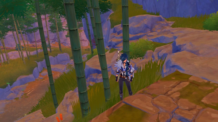 Бамбук в Геншин импакт: где растет на карте, для чего нужен