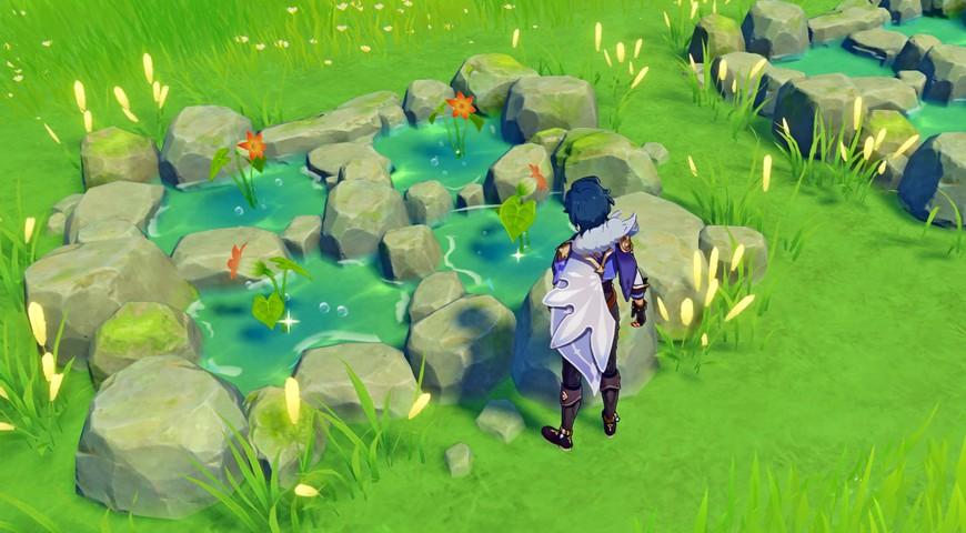 Где найти лилию калла в Genshin impact на карте Тейвета