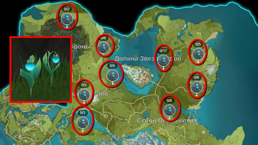 Диковинки Мондштадта в Геншин импакт: что это такое, где найти на карте